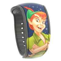 Disney Peter Pan MagicBand 2