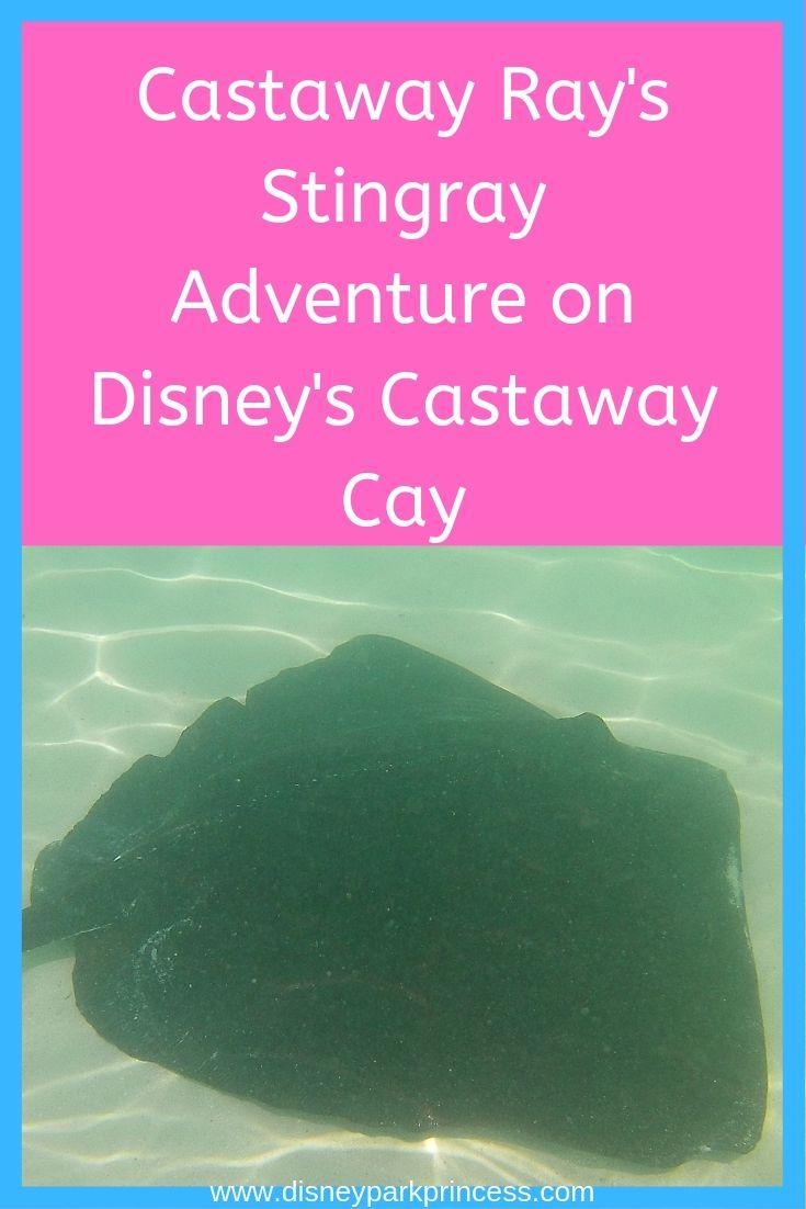 Castaway Ray's Stingray Adventure on Disney's Castaway Cay