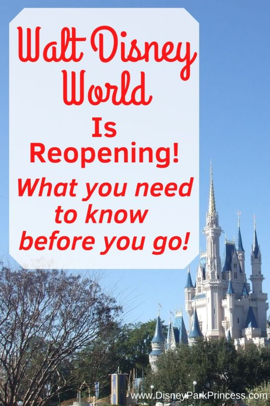 Walt Disney World is reopening. What you need to know before you go!