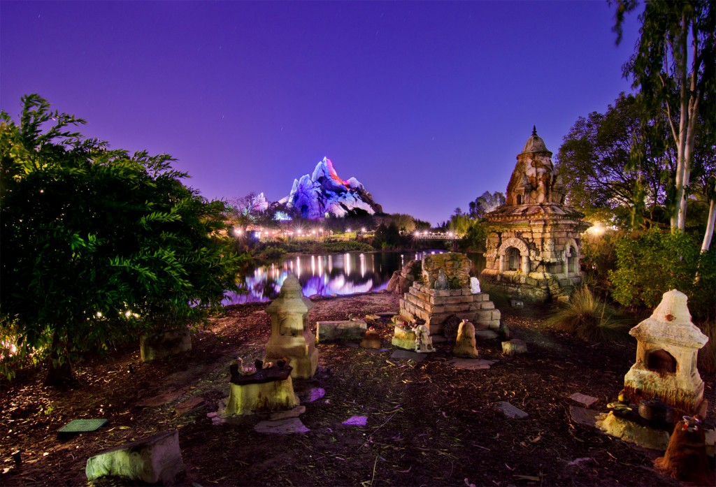 Animal Kingdom: Asia Nightfall Photo