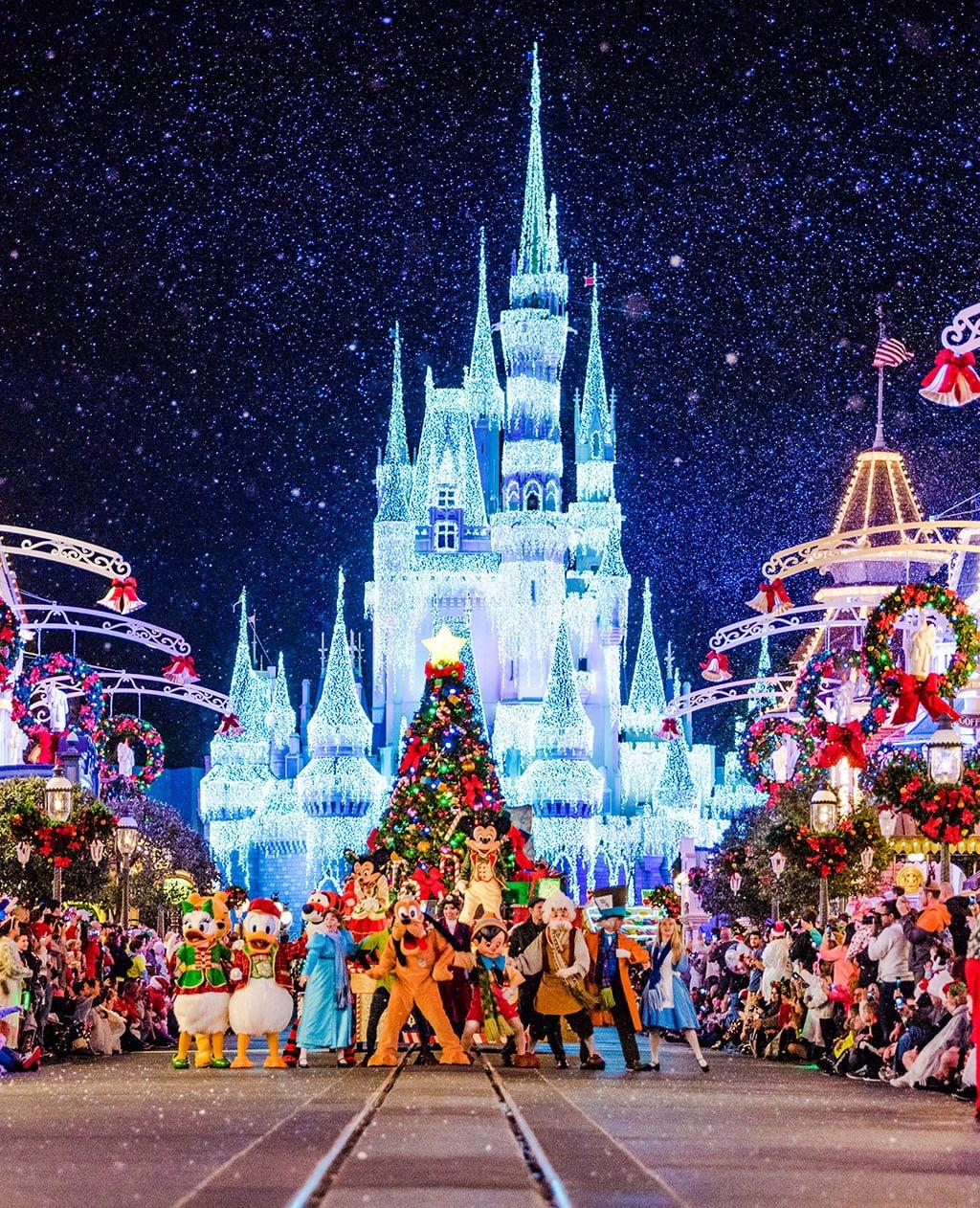 Best And Worst Months To Visit Disney World  Disney