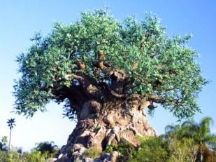 600-treeoflife