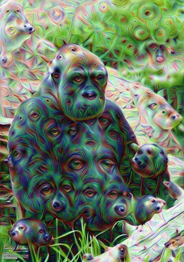 Deep Dream Generator Google