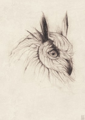 animal pencil drawings by