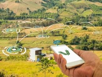 IoT WiFi