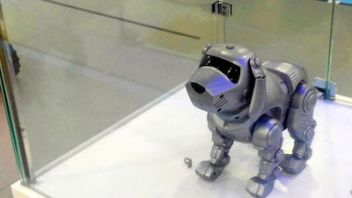 Is China's robotics rush speeding it into spiralling debt?