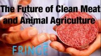 Tech Talks 2 - The Future of Clean Meat, Farming and Animal Agriculture