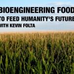 bioengineering corn