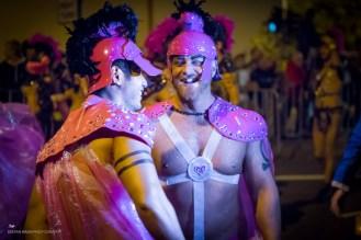 2013 Sydney Mardi Gras-28