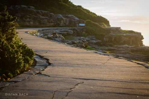 This way leads to Bondi
