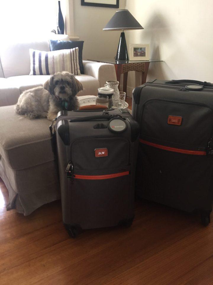 Travelling Stylishly