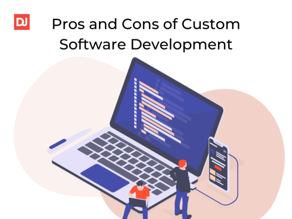 Custom software business
