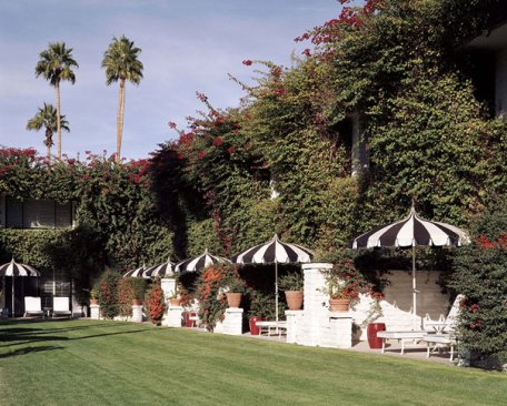 the parker palm springs | distantlocals.com