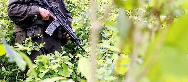 América Central: el nexo entre violencia y drogas, ¿cómo explicarlo?