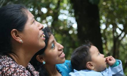 No Retrocedemos: un movimiento contra la creciente violencia sexual en Guatemala