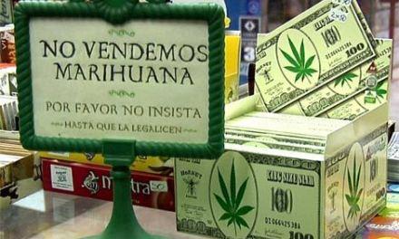 En julio se podrá comprar cannabis en las farmacias de Uruguay