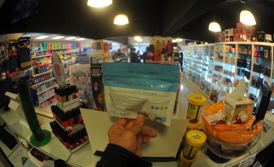 La marihuana legal llegó a las farmacias uruguayas