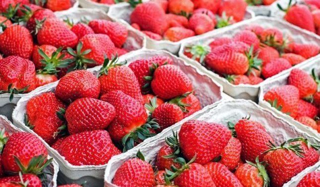 Huelva se viste de fresas y prepara esta nueva campaña