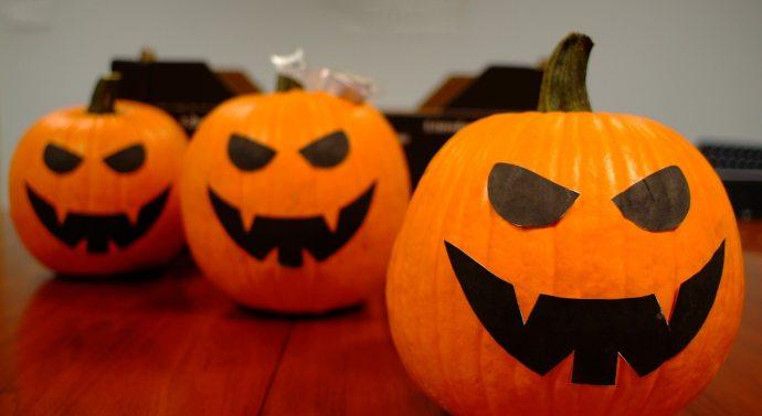 Kernel produce más de 700.000 unidades de calabazas para Halloween