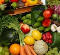España, el cuarto país exportador comunitario de mercancías agroalimentarias