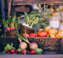 Alimentos que ayudan a subir las defensas y su clasificación