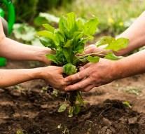 Presentan EcoEspaña, una asociación privada de impulso a la producción ecológica