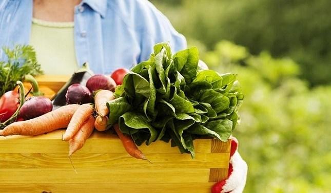 9 de cada 10 españoles quiere consumir alimentos que respeten el medio ambiente