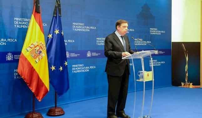 Luis Planas anuncia un paquete de medidas para asegurar el futuro del sector del aceite de oliva