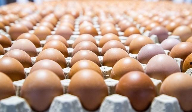 El consumo de huevos en los hogares españoles también se dispara