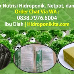 Distributor Baja Ringan Di Cilacap Terbaik Jual Netpot Rockwool Nutrisi Hidroponik Jawa