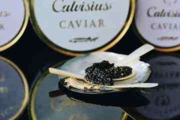 livraison caviar lyon, boutique en ligne caviar et truffe lyon, acheter du caviar lyon, acheter calvisius lyon, prix caviar, acheter caviar, oscietre, beluga, sevruga, livraison caviar techlid, livraison caviar, commande et livraison caviar ouest lyonnais, region lyonnaise, prix caviar, prix du caviar, caviar beluga, livraison caviar, livraison caviar lyon, caviar craponne, caviar brindas, caviar vaugneray, caviar saint-genis-les-ollières, caviar tassin la demi lune, caviar marcy l'étoile, caviar charbonnières les bains, caviar la tour de salvagny, caviar chaponost, caviar messimy, caviar brignais, caviar ecully, caviar limonest, caviar champagne-au-mont-d'or, caviar lozanne, caviar civrieux d'azergues, caviar charly, caviar vernaison, caviar mariage, caviar saint valentin, caviar, st valentin, caviar bonne saint valentin, cadeau original saint valentin caviar, idée cadeau femme homme saint valentin caviar, cadeau saint valentin, idée cadeau homme saint valentin, cadeau couple caviar saint valentin, dégustation de caviar, comment manger le caviar