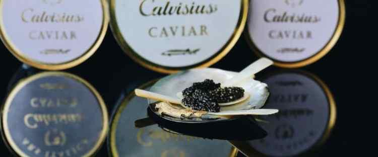 acheter du caviar lyon, acheter calvisius lyon, prix caviar, acheter caviar, oscietre, beluga, sevruga, livraison caviar techlid, livraison caviar, commande et livraison caviar ouest lyonnais, region lyonnaise, prix caviar, prix du caviar, caviar beluga, livraison caviar, livraison caviar lyon, caviar craponne, caviar brindas, caviar vaugneray, caviar saint-genis-les-ollières, caviar tassin la demi lune, caviar marcy l'étoile, caviar charbonnières les bains, caviar la tour de salvagny, caviar chaponost, caviar messimy, caviar brignais, caviar ecully, caviar limonest, caviar champagne-au-mont-d'or, caviar lozanne, caviar civrieux d'azergues, caviar charly, caviar vernaison