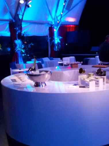 point animation soirée entreprise caviar lyon