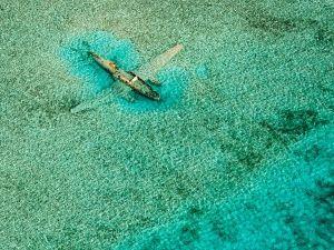 submerged-plane-bahamas_46142_600x450