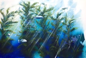 Series on the Giant Kelp Forests of Australia in Albany and Tasmania we have already lost 95% of those forests to global warming.