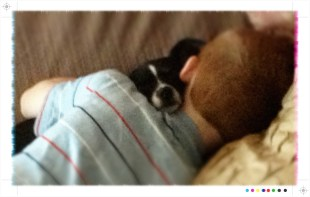 Kori and Drake nap together on a Sunday afternoon