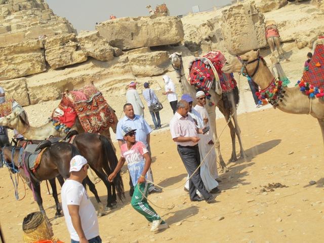 Jeg skal ikke tilbake til Giza og pyramidene - NOT