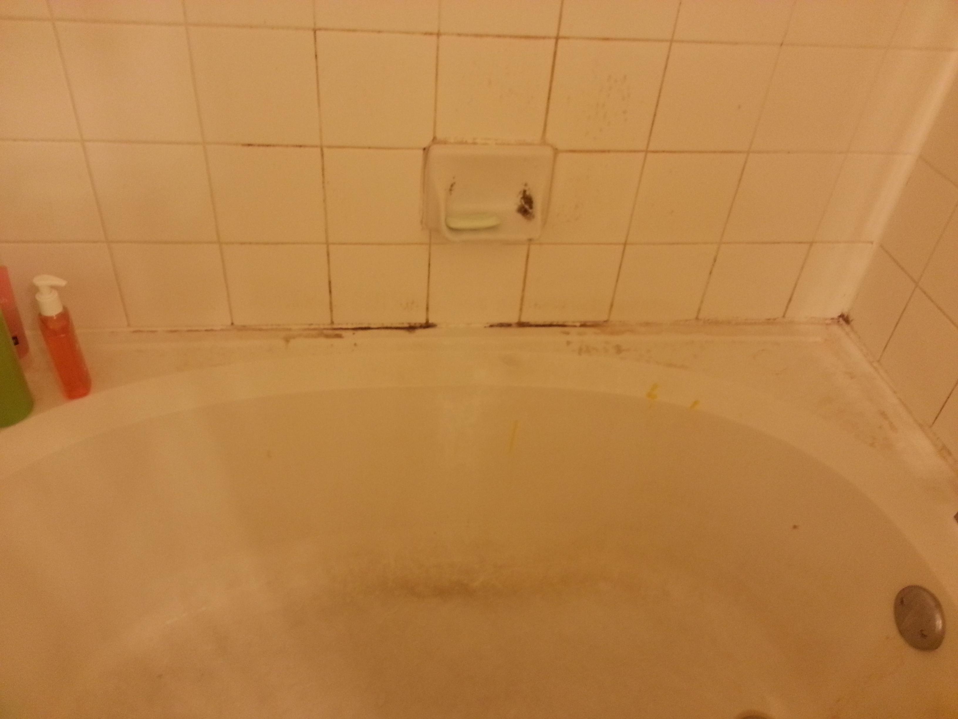 mildew in bathroom - home design