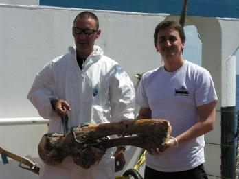 Dr. Jon Copley preparing whale bones for deployment.