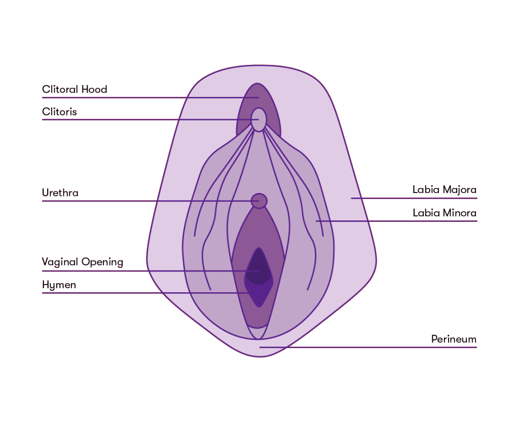 virgins can use a menstrual cup