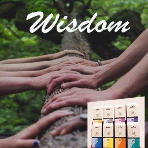 Wisdom Incenses Feng Shui