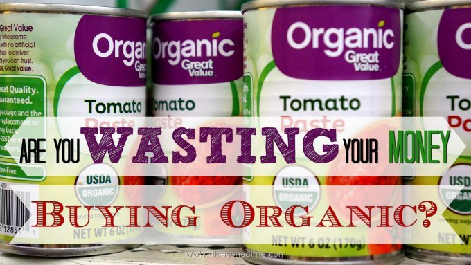 Organic food is really expensive. If you're shopping on a budget; read on. Why organics are expensive and is it worth the extra money? Where to get the best deals.