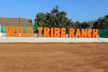 Wild Tribe Ranch Chennai