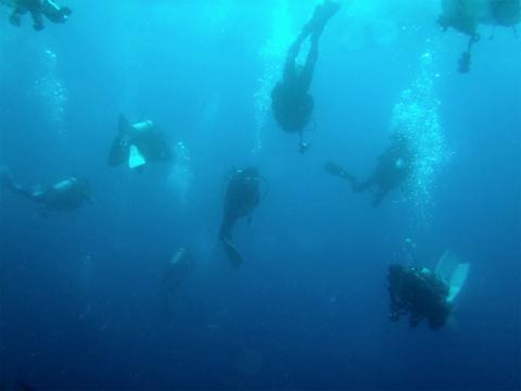 2011081314miko (16)