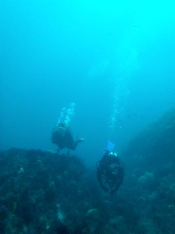 20111128nish (7)