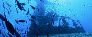 Wreck dive in Malta