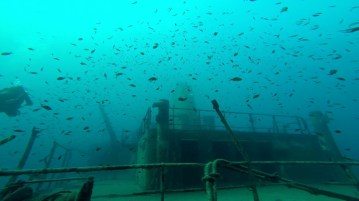{:en}Wreck Diving in Malta with the comfort of Y-40®.{:}{:it}Immersioni sui relitti di Malta con il comfort di Y-40®.{:}