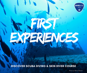 Scuba and Freediving first experiences in Malta