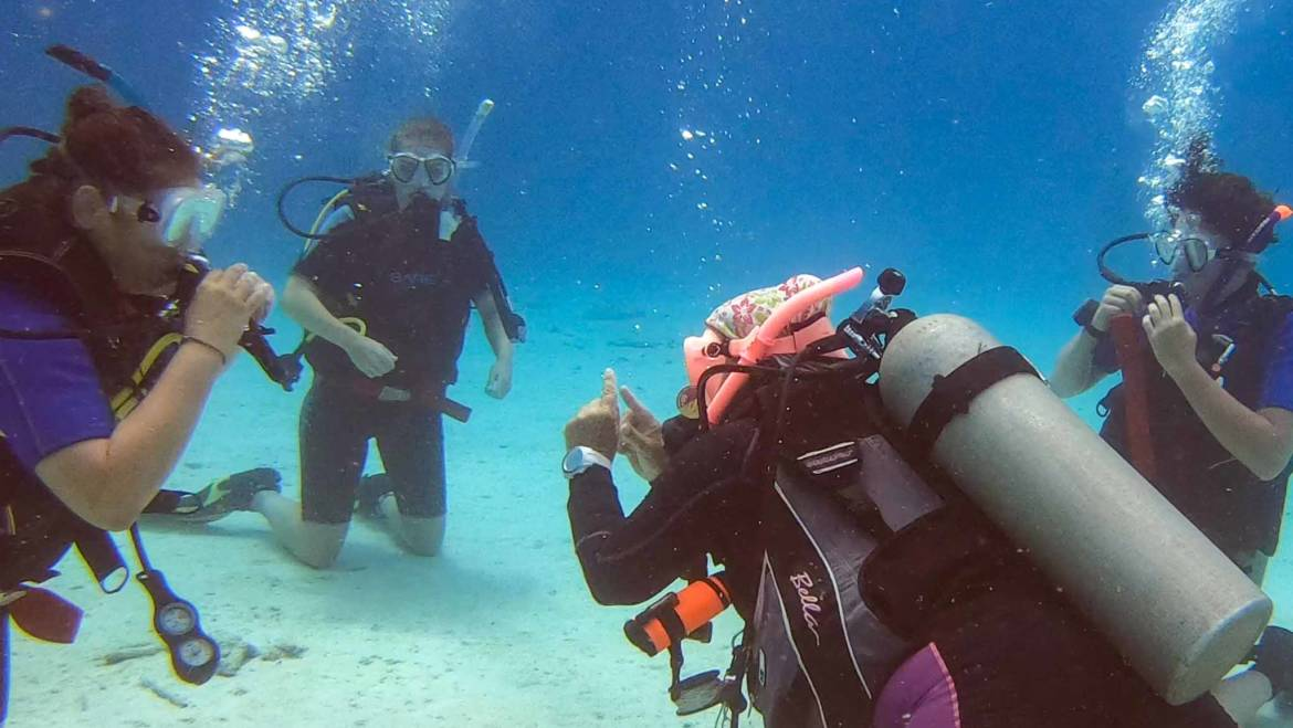 Improve your skills with your private Dive Instructor