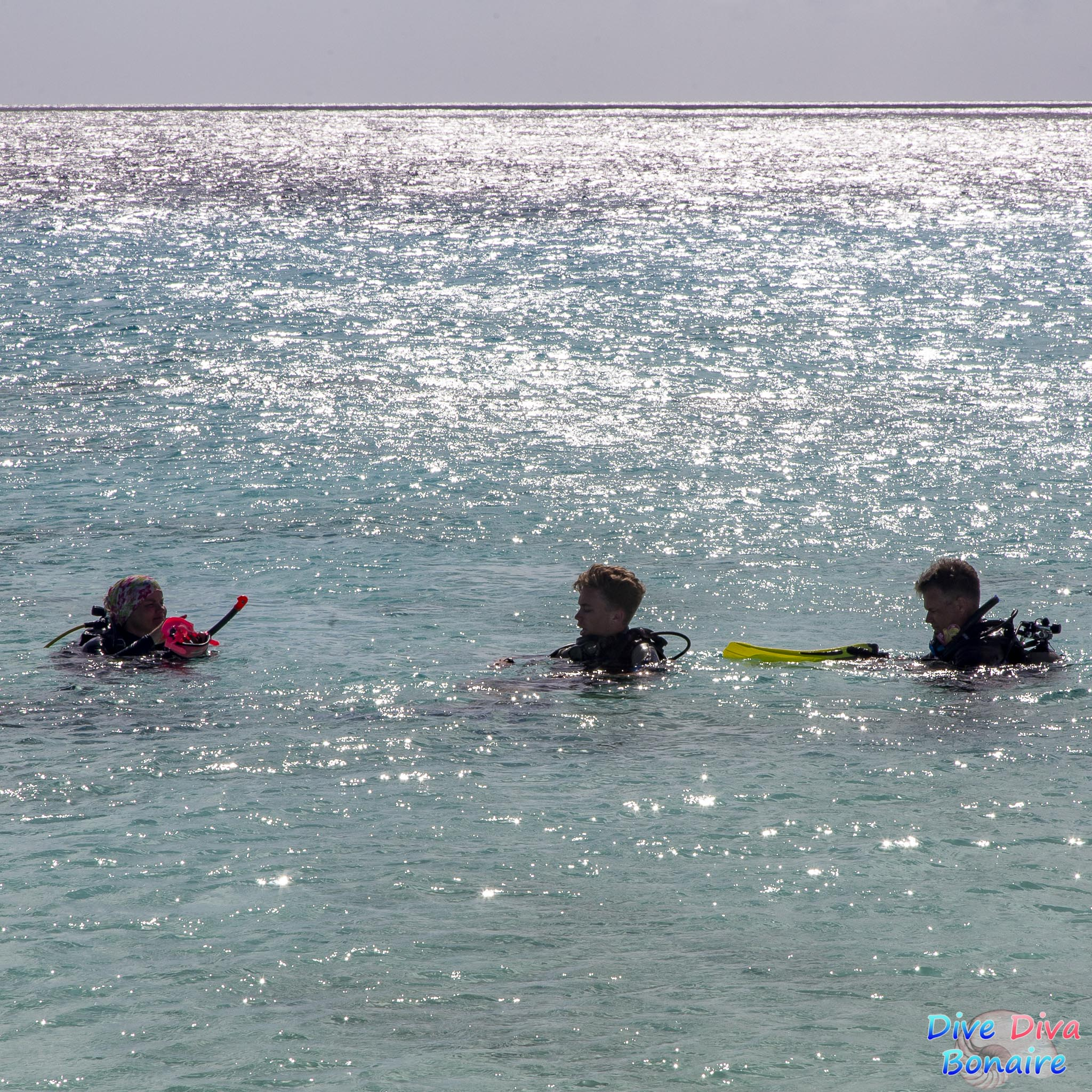 Dive Diva Bonaire - Diving Open water course Aquarius